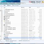 ダウンロード版GTA IVのマニュアル
